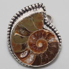 B583 Amonite Fossil & 925 Silver Overlay Ring US 10.2 Gemstone Jewelry - http://jewelry.goshoppins.com/fine-jewelry/b583-amonite-fossil-925-silver-overlay-ring-us-10-2-gemstone-jewelry/