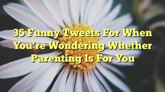 35 Funny Tweets For When You're Wondering Whether Parenting Is For You - http://doublebabystrollerreviews.net/35-funny-tweets-for-when-youre-wondering-whether-parenting-is-for-you/
