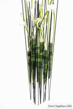 Zantedeschia-inspiration - Jonni Seppanen - Flower adventure - see also http://www.jouniseppanen.com/eng/welcome/