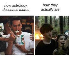 Taurus Funny, Taurus Memes, Taurus Quotes, Zodiac Memes, Zodiac Facts, Taurus Art, Astrology Taurus, Zodiac Signs Taurus, Astrology Signs