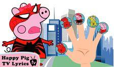 Peppa Pig Spider Man Lollipop Finger Family \ Nursery Rhymes Lyrics and