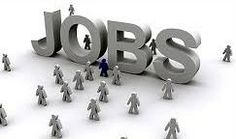 NPCC Recruitment 2014 www.npcc.gov.in Junior Engineer Vacancies.National Projects Construction Corporation, has opened its gateways for recruiting the fresh applicants who are in search of jobs in NPCC Recruitment 2014. Executive members as accordingly has come up with a NPCC notification 2014