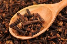 Clove Oil Recipe for Scalp Detox – The Oily Guru Clove Oil Uses, Diy Scalp Detox, Cloves Benefits, Cream Of Pumpkin Soup, Parasite Cleanse, Coffee Enema, Clove Essential Oil, Medicinal Herbs, Detox Drinks