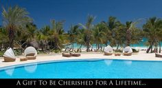 Eden Roc at Cap Cana - this is from their honeymoon registry!