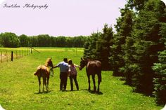 Engagement with horses