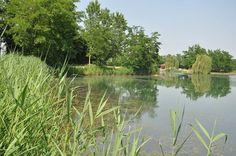 In Lomellina il Lago Santa Maria si propone a Fisheries