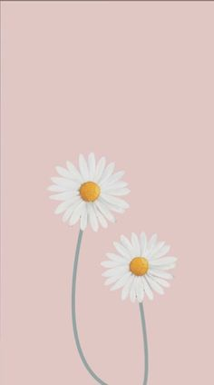 Get Best Simple Anime Wallpaper IPhone Wall paper fofos floral Best ideas - iPhone X Wallpapers Cartoon Wallpaper, Daisy Wallpaper, Iphone Wallpaper Vsco, Homescreen Wallpaper, Iphone Background Wallpaper, Tumblr Wallpaper, Mobile Wallpaper, Daisy Background, Iphone Backgrounds