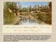 Ολες οι σημαντικές πόλεις από την αρχαιότητα, τον μεσαίωνα και μέχρι τον τελευταίο αιώνα χτίζονταν πάνω σε ποτάμια και συνδέονταν με ποτάμια. Εκτός από την Αθήνα, τα ποτάμια της οποίας μπαζώθηκαν και έγιναν άσχημοι αυτοκινητόδρομοι.
