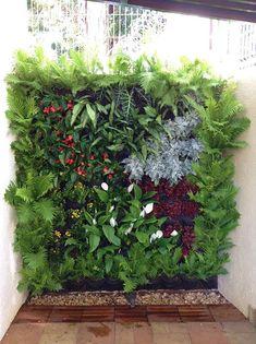 What is a Modern Garden? Vertical Garden Plants, Vertical Planting, Vertical Garden Design, Modern Garden Design, Small Space Gardening, Garden Spaces, Vertikal Garden, Walled Garden, Plant Wall