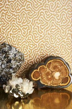 Cole and Sons Vermicelli wallpaper design.