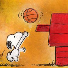 Hoops for Snoops...