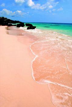 Pink sand beach, Bermuda: