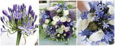 agapanthus - crinul african - flori in culoarea anului ultraviolet Agapanthus, Ultra Violet, Floral Wreath, African, Wreaths, Home Decor, Floral Crown, Decoration Home, Door Wreaths