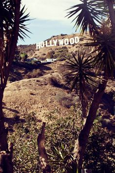 Los Angeles calling! Find out the new #SS2015 #AlphaStudio shooting made in L.A. and Santa Monica!   #losangeles #santamonica #shooting #knitwear #30thanniversary #fashion #gauge #knit #yarn #style #stylishoutfit #outfit #picoftheday #hollywood #usa #loveforknitwear #florence #AlphaStudiogoestohollywood #glam #glamour