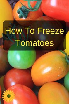 Wouldn't you LOVE to save some of this summer bounty for use in the winter? Learn how to freeze tomatoes: much easier than canned tomatoes, and even better for your health ;)