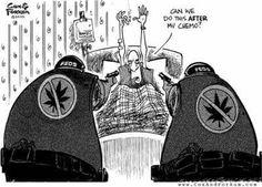 Chemo-narcs