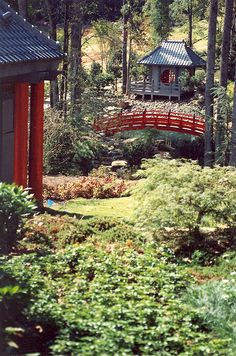 Japanese Garden and tea house designed by Joe A. Japanese Tea House, Japanese Gardens, Japanese Style, Tea Houses, Garden Waterfall, Garden Design, House Design, Water Features, Waterfalls