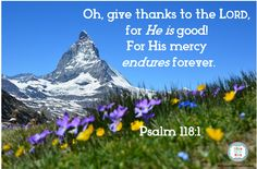 Give Thanks to the Lord scripture meme #Biblefun #wordless wednesday #meaningfulscripture
