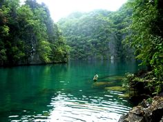Palawan | Palawan island Philippines