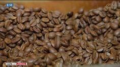 Café brasileiro começa a conquistar o mercado chinês