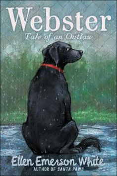 Webster : tale of an outlaw by Ellen Emerson White. When Webster the dog arrives at Green Meadows Farm he has already been adopted, mistreated, and given away three times and is done with people, but the other animals of the shelter will not let him give up on the possibility of a special family.