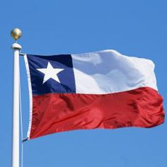 Flag of Chile waving in the wind.