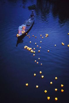 Lighting River Candles, Vu Lan Festival - Hue, Vietnam …