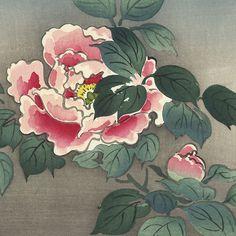 Untitled (Peonies, detail), by Tsuchiya Koitsu, 1930