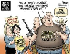 Second Amendment has been twisted to the point where it no longer resembles the intent of our founding fathers. Sooooo insecure and scared at their own shadows, these gun freaks!