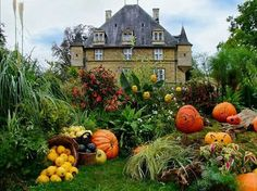 Fall in France