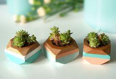 Geometrische Mini-Töpfchen aus Holz, 3er-Set