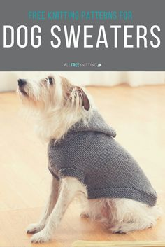 Knit the cutest sweaters for your pooch with these free patterns.
