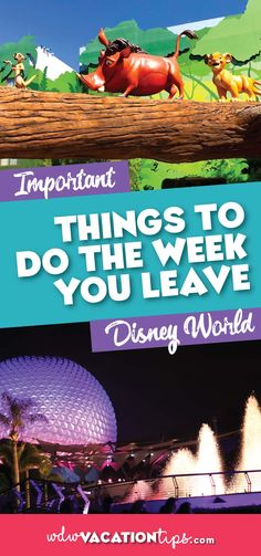 When your countdown clock reaches single digits you know your trip is getting super close and it's time to do final preparations for your trip. Here are the important things to do the week you leave for Disney World. Disney On A Budget, Disney World Planning, Disney World Vacation, Disney Cruise Line, Disney World Resorts, Disney Vacations, Walt Disney World, Orlando Vacation, Vacation Club