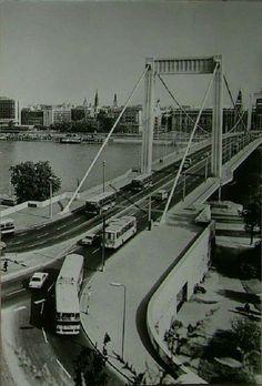 Erzsébet híd 1968