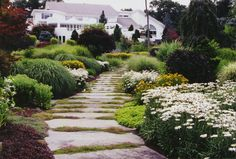 Natural Landscaping, Natural Garden Pathway & Perennial Garden in Bergen, NJ: Natural Landscape with Natural Stepping Stone Pathway & Perennial Garden in Saddle River, Bergen County , NJ.