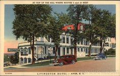Avon NY Livingston Hotel