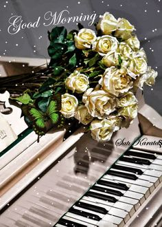 Bouquet of roses on the grand piano Piano Keys, Piano Music, All Flowers, Amazing Flowers, Piano Girl, Rose Flower Wallpaper, Fruits Images, Music Images, Music Pictures