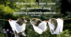"""101 Saturday Memes - """"Weekends don't count unless you spend them doing something completely pointless."""" - Bill Watterson 101 Saturday Memes - """"Weekends don't count unless you spend them doing something completely pointless. Long Weekend Quotes, Happy Weekend Quotes, Weekend Humor, Monday Humor, Happy Weekend Pictures, Bon Weekend, Good Morning Saturday, Happy Saturday, Happy Monday"""