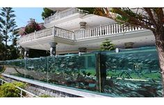 ...It contained about a thousand fish of different species and the aquarium was approximately 50 metres long. The water was taken from the sea in a continuous cycle