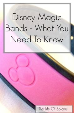 Everything you need to know about Disney World's Magic Bands