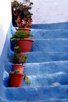 Blue stairs, Andalucia, Spain. http://www.costatropicalevents.com/en/costa-tropical-events/andalusia/welcome.html