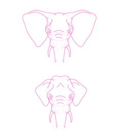 How to Draw Animals: Elephants, Their Species and Anatomy