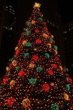 Christmas in Chicago...