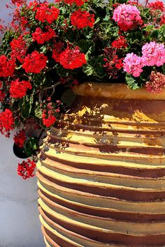 Pot with geranium by Marite2007, via Flickr ~ Greece