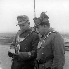 The Royal Hungarian Gendarmerie