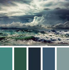 ocean color palette | ... leaves + blueberries + grapes + the ocean = a day of COLOR PALETTES