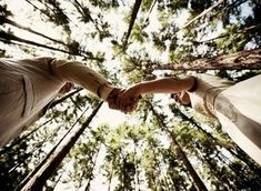 Photo taken from below facing up into tall trees. Couple holds hands as they look at each other. Couple Photography, Engagement Photography, Photography Poses, Wedding Photography, Pre Wedding Photoshoot, Wedding Shoot, Wedding Pictures, Wedding Ideas, Wedding Inspiration