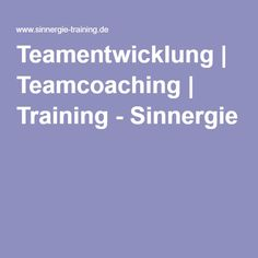 Teamentwicklung | Teamcoaching | Training - Sinnergie