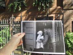 FILMography, les photos de films et leurs vraies localisations  Wednesday 1966