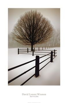 "Solitude--Product ID#: 27873  Title: Solitude  Artist: David Lorenz Winston  Type: Fine-Art Print  Paper Size: 24"" x 36"""